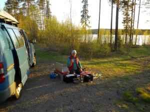 sunny swedish summer
