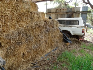 Hay & a Toyota (in which we Trust)