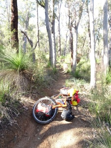 It's an MTB trail. I went the wrong way (poor signage). Was mega tough. Fortunately DOWN HILL!