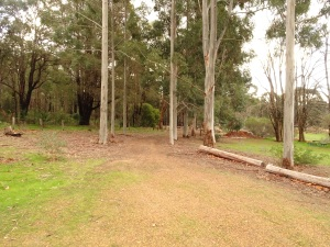 Banksia Springs, the way in
