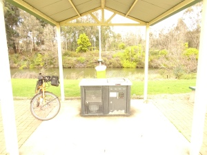 The parks often have free gas BBQs