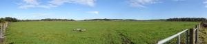 150816 farm panorama