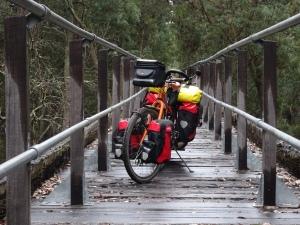 dreamer on bridge