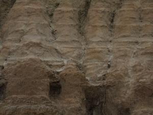 Norseman's tailings dump, detail