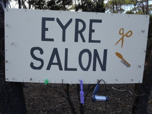 Eyre Salon! Clever bugga