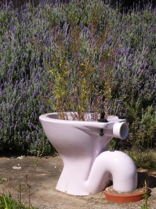 A beautifully scented toilet, with lavender no less