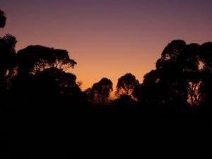Wild camp pre-sunrise