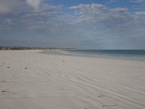 Eucla beach east