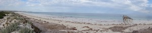 Eucla beach