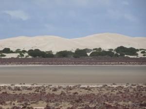 Fowlers Dunes
