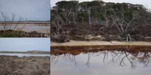 Salt lakes and Mallee