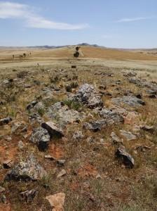 Mokata treeless conservation area. No camping here