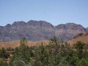 Elders Range. It took 3 hours to ride Moralana Scenic Route's 28 km. The photo-ops provided just reason for a pause