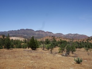 Elder Range. It dominated the view along Moralana Scenic Drive to the south