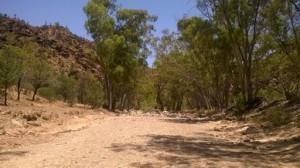 Dry river bed, Bunyeroo Gorge