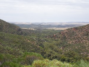 A view of the gorge itself