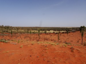 A view the other direction than towards Uluru