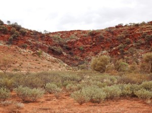 Fissure and water-course in the Gardine Range