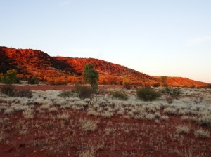Red evening Gardine Range