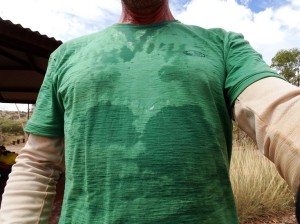 What an Icebreaker 150 gr T-shirt looks like after three days sweaty ride and no rinse