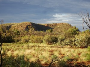 MacDonnell ranges in evening sun and dressed in light green