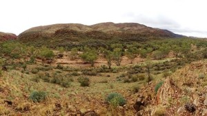 The Finke from the carpark lookout