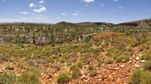 The Finke and country looking east