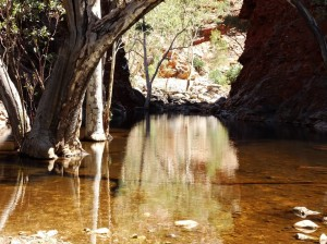 The cool and spooky waters of Serpentine Gorge
