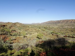 View west toward Ellery Creek turn-off over a green desert
