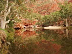 Ormiston Gorge is pretty full, again