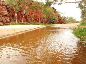 Ormiston Creek may be flowing but it's hardly a torrent