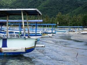 Idle fishing-tourist boats
