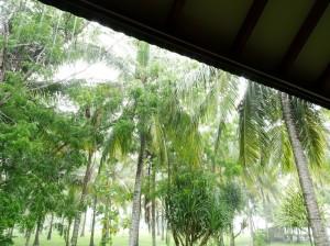 Torrential rain. Spectacular