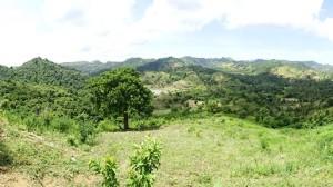 Nice hilly terrain