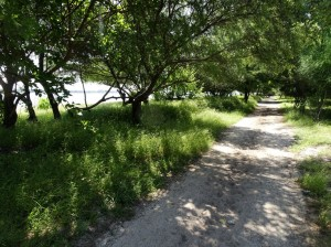 It's 5 km to walk around Meno. Lovely walk