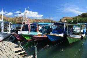 Rinca's colourful harbour