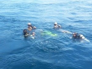 Moving away from the boat before diving