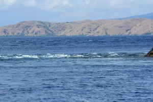The powerful currents can be seen tearing past the edge of a small island. At least 10 knots and possibly much more