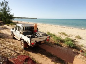 A Beast, a Beach and the Arafura along the coastal route