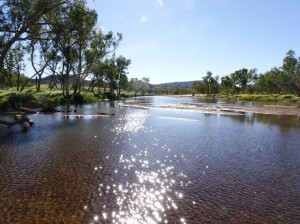 The Finke hasn't stopped flowing since the rains in December. Which is a bit unprecedented.