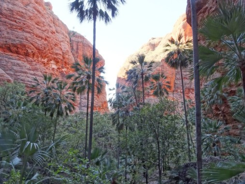 The tiny gap at the far end is the way in and out of Mini-Palms gorge