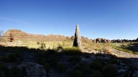 Lonely termite mound sentinel