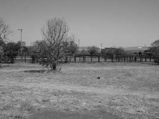 Where the old meatworks used to be. Now cattle yards