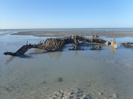 Some of the wrecks, like this Catalina are visible at very low tides