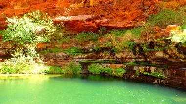 Lovely oasis