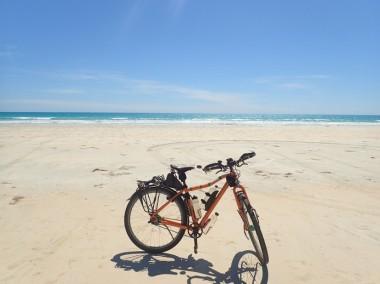 Dreamer enjoying a day at the beach