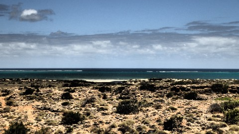 Ningaloo Reef break