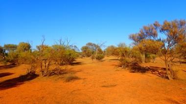 Murchison views