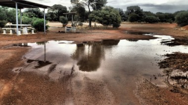 My first camp site. I went for a run, sweating like hell in the humidity. From this puddle I washed myself