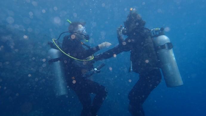 Stuart finally diving again